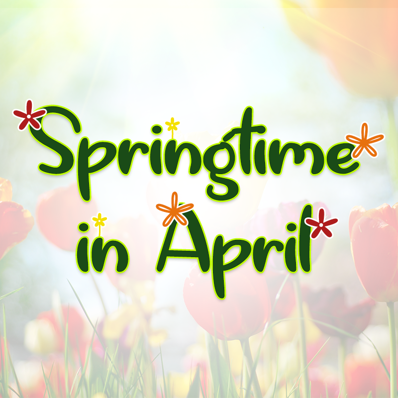 Springtime in April by Misti's Fonts